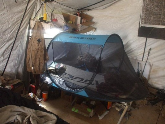 SansBug Tent on a Cot