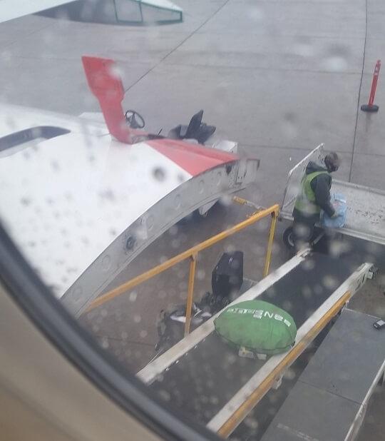 sansbug in a plane